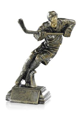 Trophée Hockey 3852576